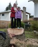 Mother & Daughter Standing on Stump
